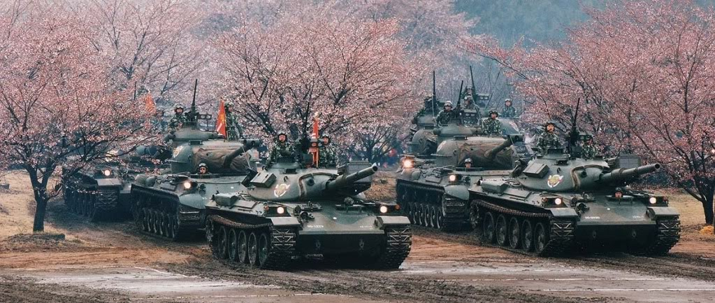 Jpn Tanks Cherry Blossoms